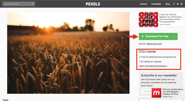 Free stock photos   Pexels Stock Photos