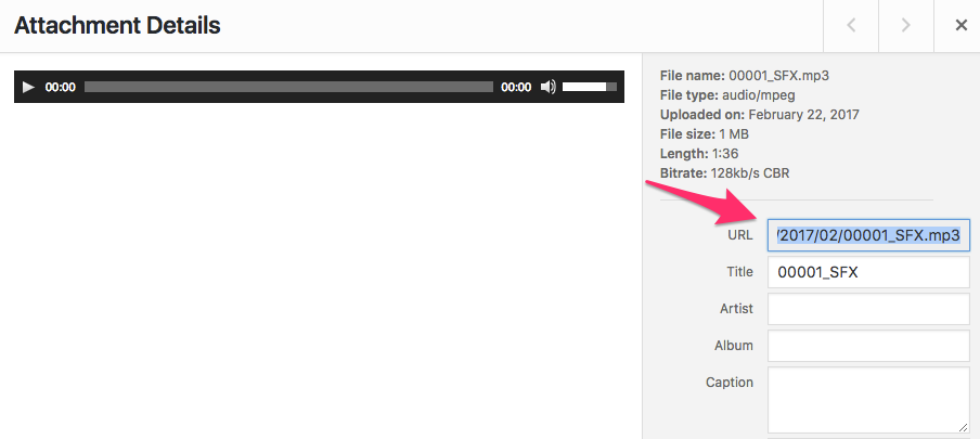 How to craft the perfect blog post   Audio File Upload