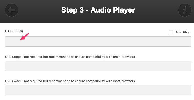 How to craft the perfect blog post   Audio Player URL Insert
