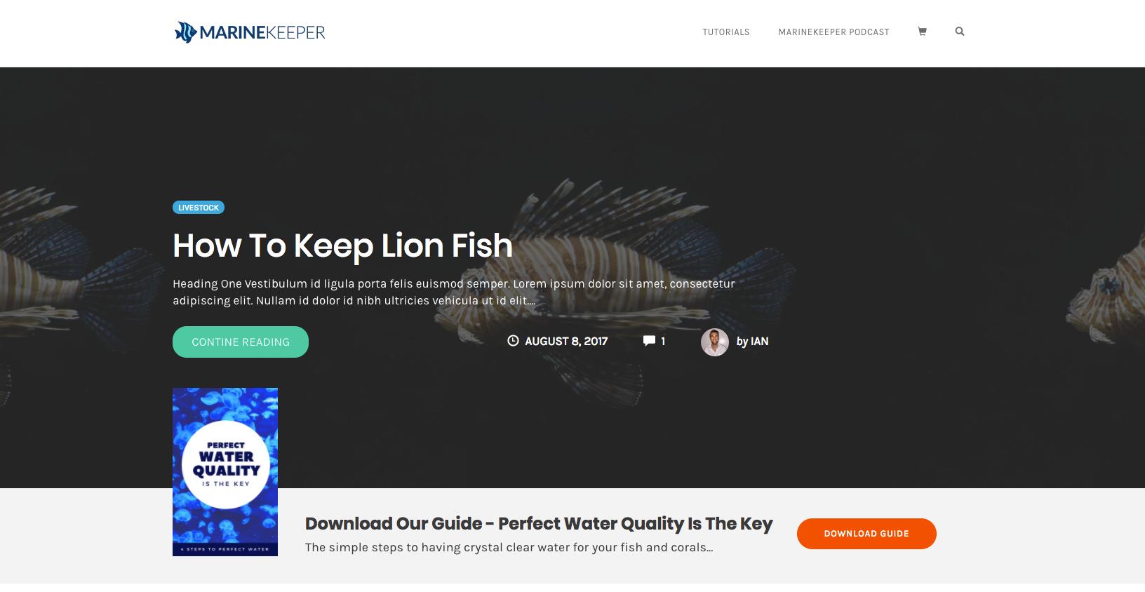 Blogs to inspire WordPress Theme Design | OptimizePress SmartTheme