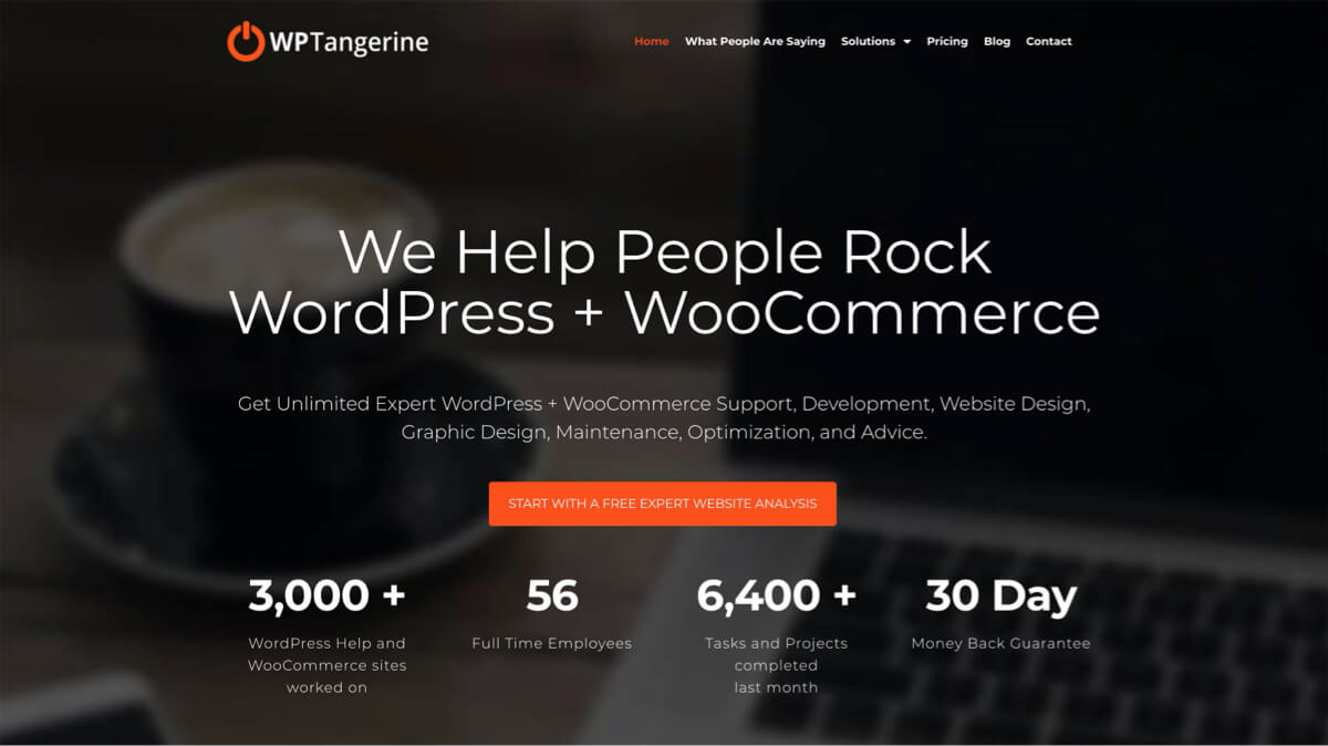 WordPress services subscription